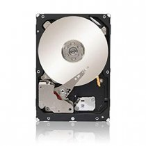 "SEAGATE 1TB 3.5"" CONSTELLATION ES.3"